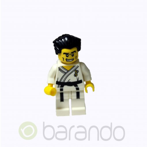 LEGO Karate Master col030 Series 2 Minifigures